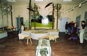 museet_framre_delen